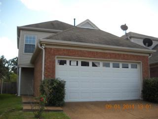 9133 E Cinderhill  , Memphis, TN 38016 (#9935018) :: All Stars Realty