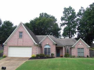 2417  Carroll Ridge Lane  , Memphis, TN 38016 (#9937985) :: RE/MAX Real Estate Experts