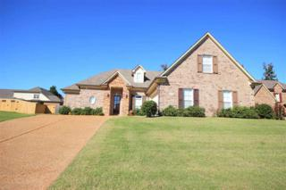 2848  Colony Cv  , Southaven, TN 38672 (#9939191) :: RE/MAX Real Estate Experts