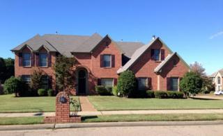 8994  Chimneyrock  , Memphis, TN 38016 (#9939724) :: RE/MAX Real Estate Experts