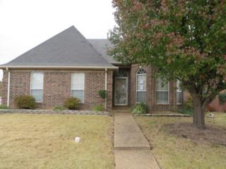 9752  Misty Bay  , Memphis, TN 38002 (#9940863) :: All Stars Realty