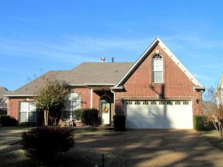 8202  Old Brownsville Rd  , Bartlett, TN 38002 (#9940885) :: All Stars Realty