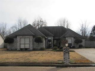 7533  Burnstown  , Memphis, TN 38133 (#9941297) :: All Stars Realty