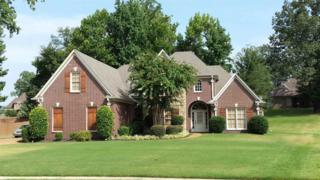 10446  Pisgah Forest  , Unincorporated, TN 38016 (#9948321) :: The Wallace Team - Keller Williams Realty