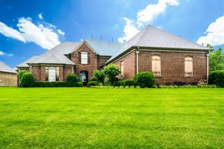4593  Mount Gillespie Drive  , Lakeland, TN 38002 (#9952496) :: The Wallace Team - Keller Williams Realty