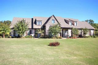 80  Devonshire  , Unincorporated, TN 38028 (#9938520) :: RE/MAX Real Estate Experts