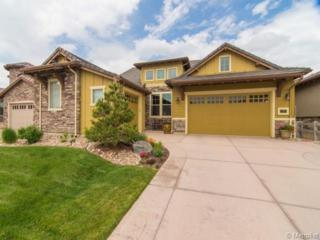 289  Featherwalk Court  , Highlands Ranch, CO 80126 (#1893361) :: The Peak Properties Group