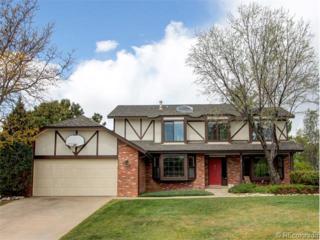 8863 S Indian Creek Street  , Highlands Ranch, CO 80126 (#2020912) :: The Peak Properties Group