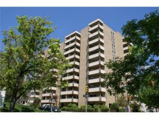 700  Washington Street  504, Denver, CO 80203 (#2046069) :: The Peak Properties Group
