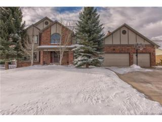 53  Falcon Hills Drive  , Highlands Ranch, CO 80126 (#2077841) :: The Peak Properties Group