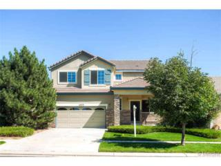 15573 E 96th Way  , Commerce City, CO 80022 (#2243834) :: The Peak Properties Group