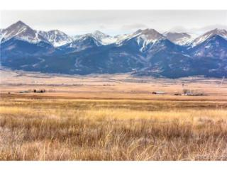 S. Fifth Street  , Westcliffe, CO 81252 (#2362226) :: The Peak Properties Group