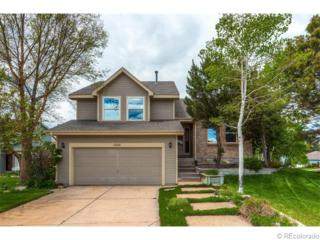 1948  Foxfield Drive  , Castle Rock, CO 80104 (#3532109) :: The Peak Properties Group