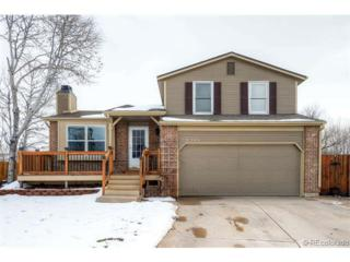 8340  Wild Alfalfa Place  , Parker, CO 80134 (#3790189) :: The Peak Properties Group