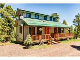 190  Shady Hollow Road  , Nederland, CO 80466 (#4183032) :: The Krodel Team | Cherry Creek Properties, LLC