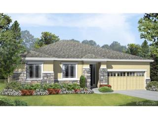 6104  Hoofbeat Place  , Castle Rock, CO 80108 (#4724399) :: The Peak Properties Group