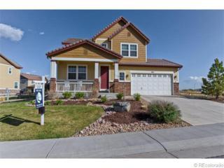 565  Meadowleaf Lane  , Highlands Ranch, CO 80126 (#4835965) :: The Peak Properties Group