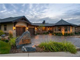 10829  Backcountry Drive  , Highlands Ranch, CO 80126 (#4885665) :: The Peak Properties Group