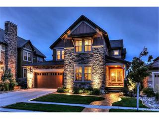 10721  Sundial Rim Road  , Highlands Ranch, CO 80126 (#5102997) :: The Peak Properties Group