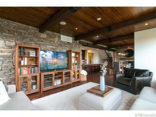 123  Sandalwood Way  , Highlands Ranch, CO 80126 (#5288413) :: The Peak Properties Group