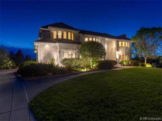63  Falcon Hills Drive  , Highlands Ranch, CO 80126 (#5312412) :: The Peak Properties Group