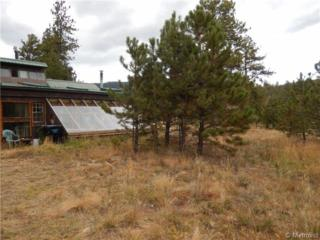 45  Fitzsimmons Road  , Bailey, CO 80421 (#5325594) :: The Peak Properties Group