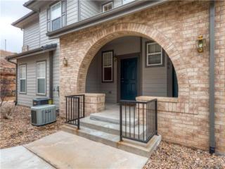 6722 S Winnipeg Circle  105, Aurora, CO 80016 (#5359607) :: Wisdom Real Estate