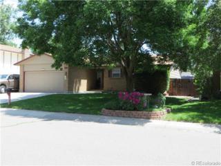 7068  Cole Court  , Arvada, CO 80004 (#5459494) :: The Krodel Team | Cherry Creek Properties, LLC