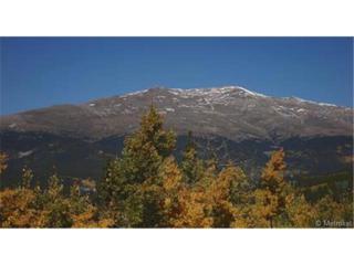 Glacier Ridge Lot 60  , Fairplay, CO 80440 (#5979153) :: The Peak Properties Group