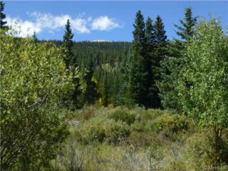 1269  Co Road 6  , Alma, CO 80420 (#6127399) :: Wisdom Real Estate