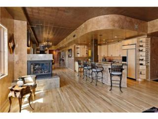 1735  19 Street  5B, Denver, CO 80202 (#6786049) :: The Peak Properties Group