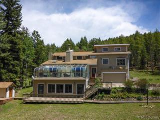 8280  Grizzly Way  , Evergreen, CO 80439 (#6997493) :: The Healey Group