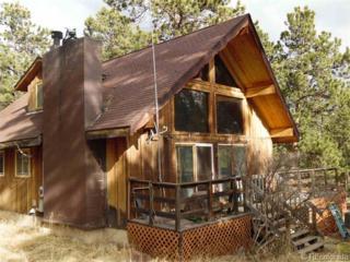 17  Kit Lane  , Bailey, CO 80421 (#7086784) :: The Krodel Team | Cherry Creek Properties, LLC