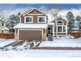 4572 N Blazingstar Trail  , Castle Rock, CO 80109 (#7348451) :: The Peak Properties Group