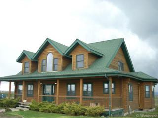 347  County Road 122 Road  , Elizabeth, CO 80107 (#7357570) :: Colorado Home Finder Realty