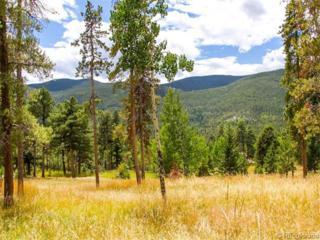 63  Evergreen Drive  , Evergreen, CO 80439 (#7393761) :: Wisdom Real Estate