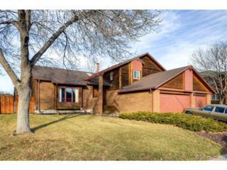 2005 E 128th Drive  , Denver, CO 80241 (#8048877) :: The Peak Properties Group