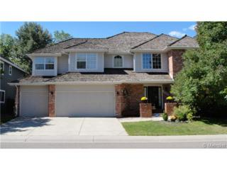 9143  Seven Arrows Trail  , Lone Tree, CO 80124 (#8247962) :: The Healey Group