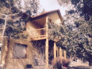 57  Shawnee Road  , Shawnee, CO 80475 (#8384670) :: The Krodel Team | Cherry Creek Properties, LLC