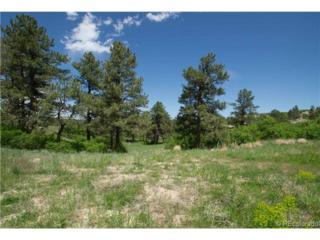 2163  Sierra Verde Court  , Castle Rock, CO 80104 (#8601341) :: The Krodel Team | Cherry Creek Properties, LLC