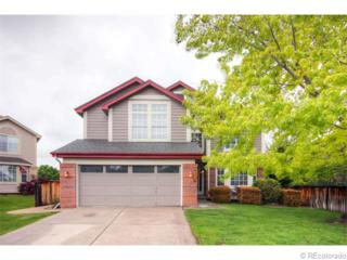 9741  Burntwood Ct  , Highlands Ranch, CO 80126 (#8603818) :: The Peak Properties Group