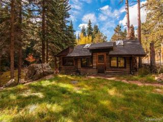 7106 S Brook Forest Road  , Evergreen, CO 80439 (#8720901) :: The Krodel Team | Cherry Creek Properties, LLC