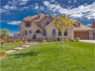 10692  Flowerburst Court  , Highlands Ranch, CO 80126 (#8833165) :: The Peak Properties Group