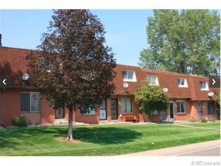 7117 S Webster Street  , Littleton, CO 80128 (#9029684) :: Colorado Home Finder Realty