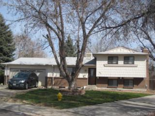 331 E 112th Circle  , Northglenn, CO 80233 (#9136521) :: Colorado Home Finder Realty