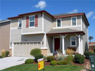 1312  Red Mica Way  , Monument, CO 80132 (#9164684) :: The Peak Properties Group