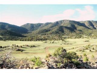 Sunnybrook Trail  , Canon City, CO 81212 (#9764551) :: The Peak Properties Group