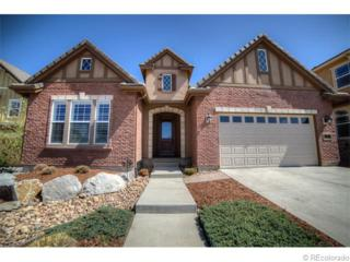 501  Maplehurst Drive  , Highlands Ranch, CO 80126 (#9803947) :: The Peak Properties Group