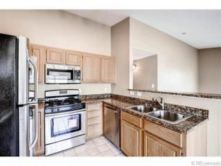 3722  Cactus Creek Court  203, Highlands Ranch, CO 80126 (#1789620) :: The Peak Properties Group