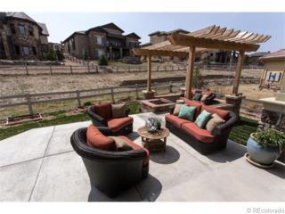 288  Featherwalk Court  , Highlands Ranch, CO 80126 (#2899658) :: The Peak Properties Group
